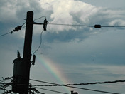 July 26 Storm - Hampden