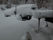 Truck is buried