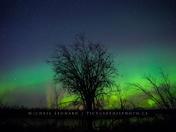 Aurora Borealis, near Slave Lake, AB