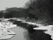 creek b&w