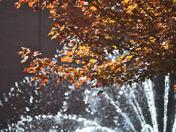 Water Fountain at UW-Milwaukee