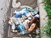 MMSD or the Litterbugs