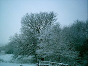 Genoa City, WI Snow Storm