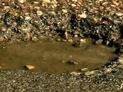 Potholes 4