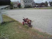 Senior Pet Dachshund in K-9Cart.com Dog Wheelchair