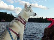 Maya on the lake