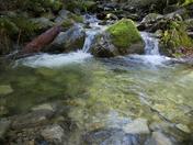 LDR Creek.jpg