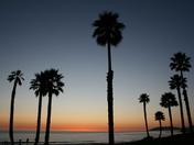 California in February