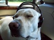 Casper Headphones.JPG