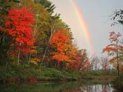 Stream of Colors
