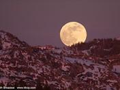 """""""Wolf"""" Moon"""