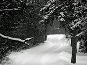 winter road b&W