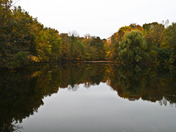 Wells Lake Ridgerun County Park