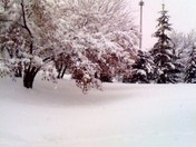1st Snow, Christmas 2009.jpg