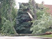 Tornado in Muskego6.21.2010 037.jpg