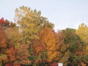 Sheboygan Autumn's Colors