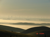 Potrero Hills morning fog.JPG