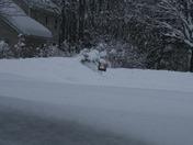 1st Snow Storm 2010