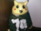 GreenBay Packers FAN