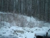 2/16/10 Snowstorm