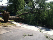 The wrath of Mother Nature