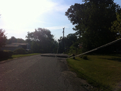 down poles in parkville- no BGE yet