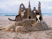 Duffy and Scotty build a sand castle 7/12
