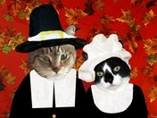 Duffy & Scotty in their Pilgrim costumes for Thanksgiving 2012