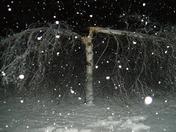 mason snow april 27 075.JPG
