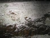 Paloma 95252 Calaveras snow