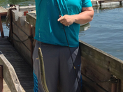 mike crane of Bristol caught a 2.5-3 foot eel in lake Champlain by the Charlotte