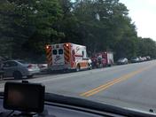 Incident at Bingham Falls in Stowe