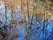 Stream Reflections#5