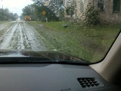 leaves blown in rode from storm NY