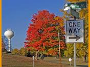 Fall Colours @ West Bend. September 2012. #1.jpg