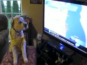 Lilly watches Sally's Forecast