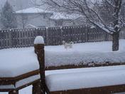 A snowy February 13th in Omaha