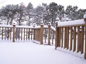 New snow 2-13-09