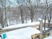 Feb Winter storm 09 003.JPG