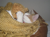 Wilson & his baby...