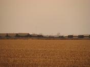 UP coal train blown off tracks #1