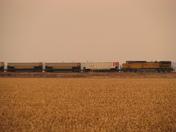 UP coal train blown off tracks #2