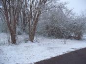 Mena Thurs Evening Snow