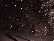 Mena Snow