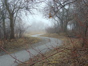 Foggy Afternoon-2