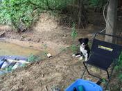 daisy at lee creek