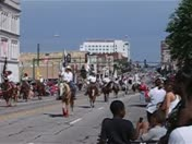 Rodeo Parade w/daisy
