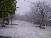 big snow falling