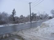 Ice crushed trees, Walnut, IA