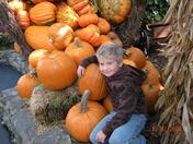 Fowler in Pumpkins